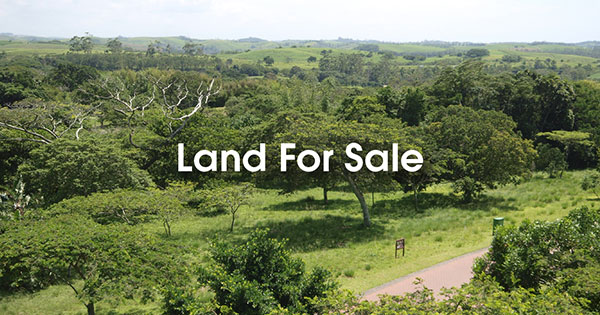 Eden Rock Estate Land For Sale